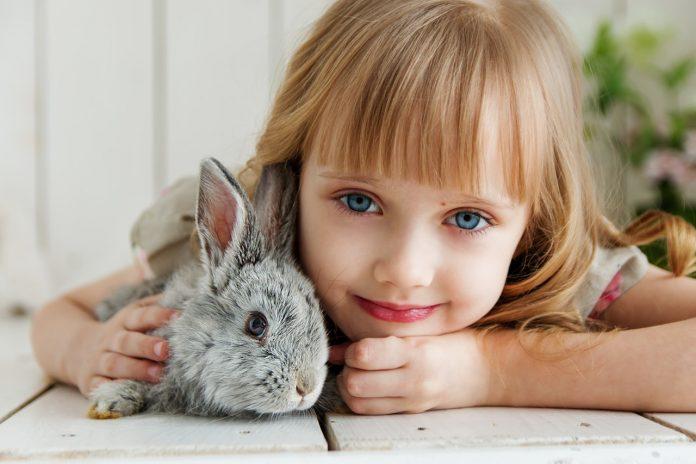 kind en huisdier
